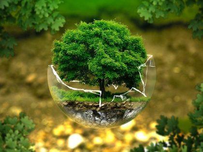 Préserver la terre
